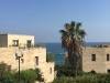 Israel019